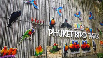 Get Closer to Nature With Phuket Bird Park